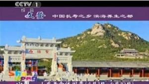 文登打造中国养生之都实施战略策划及整合营销咨询
