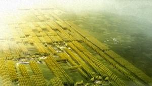 金昌市区北部绿色长廊概念性景观规划
