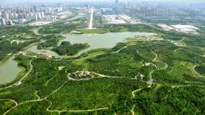北京奥林匹克森林公园规划设计