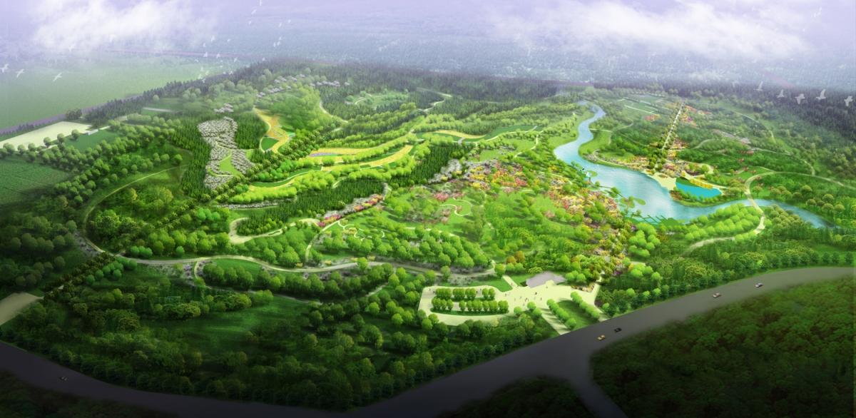 壁纸 成片种植 风景 平面图 植物 种植基地 桌面 1200_586
