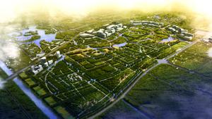 上海奉贤区南桥新城中央绿地总体规划设计