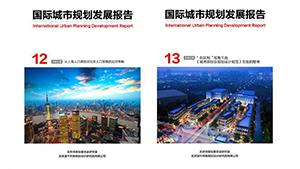 国际城市规划发展报告