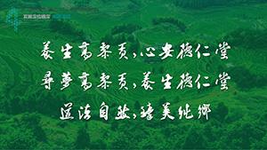 德仁堂 · 高黎贡幸福健康小镇前期策划与概念规划