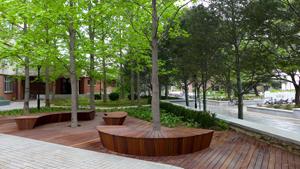 清华教学楼周边景观改造设计