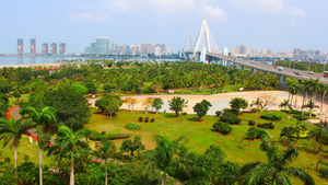 海口市三园合一景观提升工程