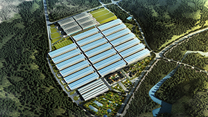 重庆市涪陵榨菜集团智能化生产基地规划方案设计