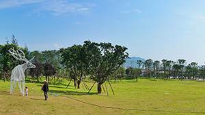 雅安熊猫绿岛公园景观设计